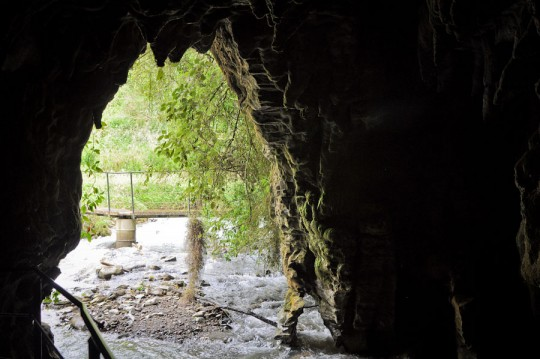 waitomo-cave
