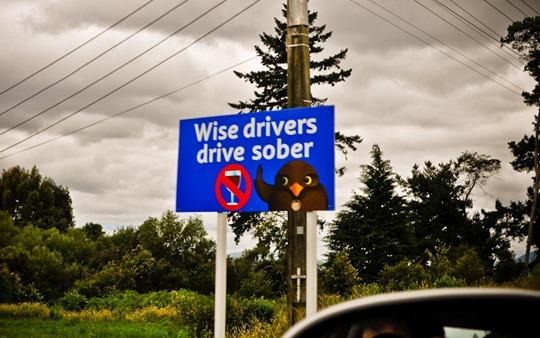 7-drive-sober