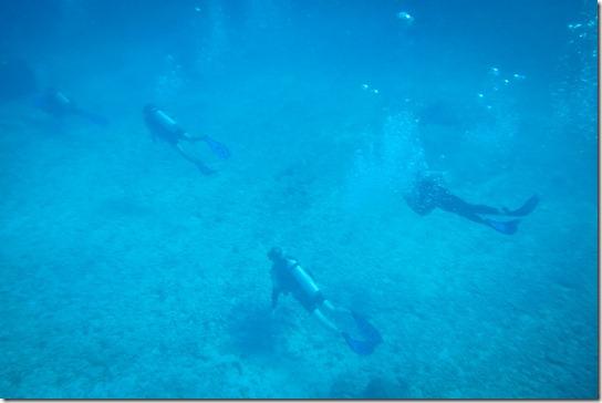 divers-underwater