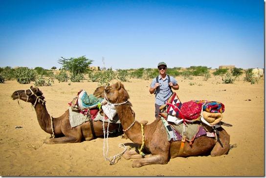 camel-safari-thar-desert-parked