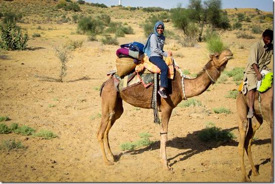 camel-safari-thar-desert-q