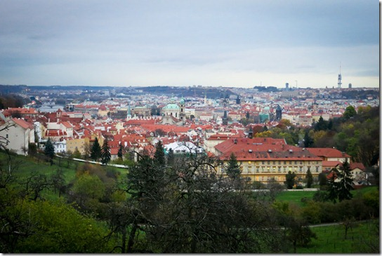 prague-view-segway