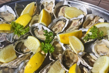 craig-namibia-oysters